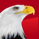 1800 The Eagle logo icon