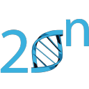 20n logo icon