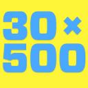 30×500 logo icon