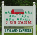 7 G'S FARM, LLC logo