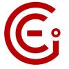 The CEI Group