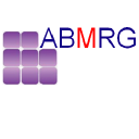 ABMRG (Ace Business & Market Research Group) logo