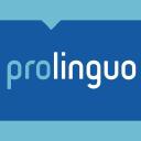 Absolute Translations G.b.R. logo