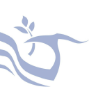 Accentis Limited logo