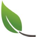Acer Ecology Ltd logo