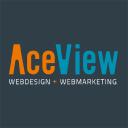Aceview Internet logo