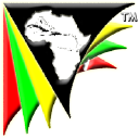 ACSioN Network logo