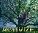 Activize, Inc. logo