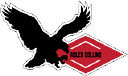 Adler Insulation and Firestopping ltd. logo