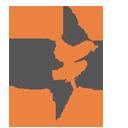 Advanced Exteriors, Inc. logo