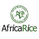 Africa Rice Center logo