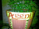 AGGNI Solutions - The Talent Management Company logo