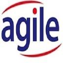 Agile Technology Solutions on Elioplus