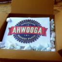 Ahwooga.com LLC logo