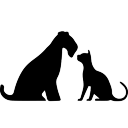 aikenpetvet.com logo icon