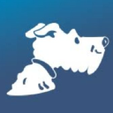 Airfarewatchdog logo icon