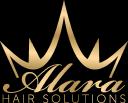 ALARA Industrial Hygiene Services Limited logo