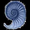 Alda Pereira Design Inc. logo
