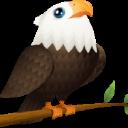 alexdigital.com logo