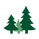 All-Coast Forest Products
