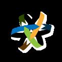AllegiantStar Solutions logo