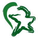 All Star Health logo icon