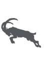 Alpenspeed LLC logo