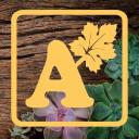 Alsip Home & Nursery Company Logo
