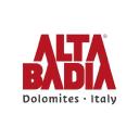 Badia logo icon