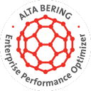 Alta Bering Management Technology Consultants Ltd