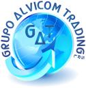 ALVICOM SERVICIOS GENERALES logo