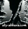 Docteur Aly Abbara logo icon