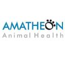 Amatheon Pharmaceuticals logo