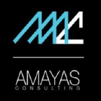 emploi-amayas-consulting