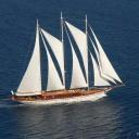 American Yacht Company logo