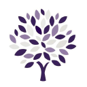 AMS Insurance Brokers logo