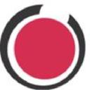 Anactics Consulting, Inc. logo