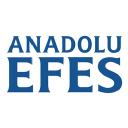 Anadolu Efes Georgia logo