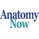 Anatomy Now, LLC logo
