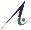 Ancillary Advantage, Inc. logo