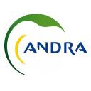 Andra logo icon