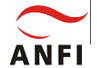 Anfi Systems bv