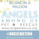 Pet Rescue logo icon
