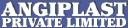 Angiplast Pvt Ltd logo