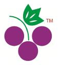 Angooor.com logo