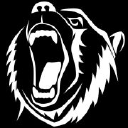 Angry Bear Ltd logo
