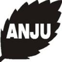 Anju Pharmaceuticals logo