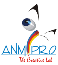 Anmipro Technologies Pvt. Ltd logo