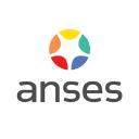 Anses logo icon