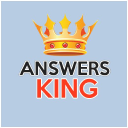 Answersking logo icon
